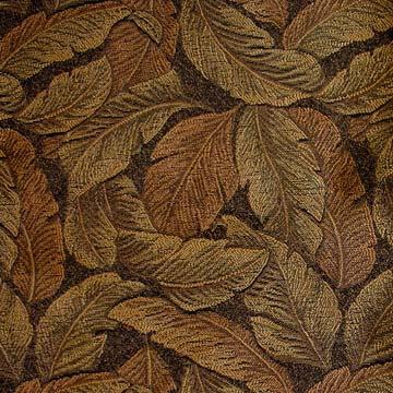Nigella Foliage