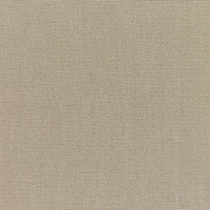 Canvas Taupe